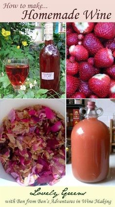 How to make your own homemade wine...includes recipes for Strawberry Wine and Rose Petal wine #wine #howtomakeyourownwine