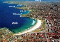 Surfing Bondi Beach Sydney Australia | Bondi Beach, NSW, Australia - Surferpedia - The Wiki Encyclopedia of ...