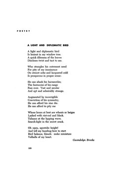 A Light and Diplomatic Bird by Gwendolyn Brooks | Poetry Magazine