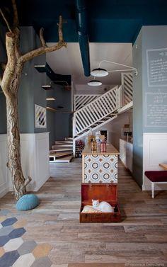 Romeow, restaurante vegano y pastelería, int. Francesco Zarbano • Romeow Cat Bistrot, in Rome