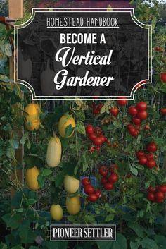 Grow a Vertical Garden [Chapter7] Homestead Handbook | Gardening Ideas and Tips by Pioneer Settler at   http://pioneersettler.com/homestead-handbook-vertical-garden/