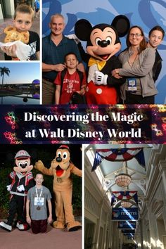 Discover the Magic at Disney World | Little Family Adventure