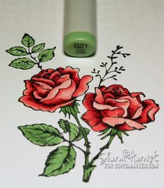 Coloring and shading flowers with Copics #cardmaking #coloring