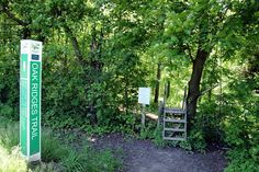 The Oak Ridges trail! I love a Canadian hike :-) @HalfmoonYoga