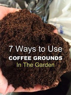 Organic Gardening Here are 7 ways how to use coffee grounds in your garden. You may be amazed at how versatile this item is! - Here are 7 ways how to use coffee grounds in your garden. You may be amazed at how versatile this item is! Garden Beds, Lawn And Garden, Garden Soil, May Garden, Gravel Garden, Blue Garden, Garden Trellis, Garden Fencing, Garden Planters