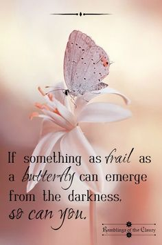 If something as frail as a butterfly can emerge from the darkness, so can you quotes strength Emergence Spiritual Quotes, Wisdom Quotes, Words Quotes, Me Quotes, Motivational Quotes, Inspirational Thoughts, Positive Thoughts, Positive Quotes, Affirmations