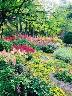 Shade - Plant en Masse - Plant en Masse  Just about every type of plant looks better in large groupings than it does planted individually. Here, drifts of astilbe seem to tower out of a groundcover of golden sedum.    Test Garden Tip: Planting en masse doesn't necessarily mean growing only a single variety. Here, several selections of astilbe combine for even more interest