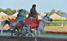 Oman | Annual Royal Horse Race Festival. credit: ONA.