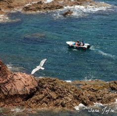 Berlengas (2014) Portugal, Boat, Dinghy, Boats, Ship