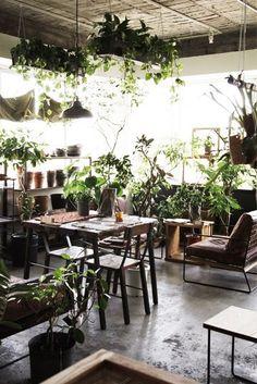 meet me in the garden room Indoor Garden, Indoor Plants, Home And Garden, Garden Living, Cafe Interior, Interior And Exterior, Interior Design, Interior Plants, Décoration Urban Jungle