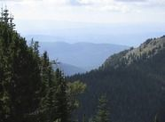 Commercial Real Estate - For Sale | Buckeye Mine (aka Crescent Mine)  Cresent Peak Road, Sumpter, OR #BuckeyeMine #CrescentMine #CommercialRealEstate #GailBowden