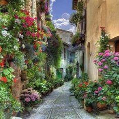 Walkway thru gardens Beautiful Streets, Beautiful Places To Visit, Wonderful Places, Beautiful World, Beautiful Gardens, Places Around The World, Travel Around The World, Around The Worlds, Places To Travel