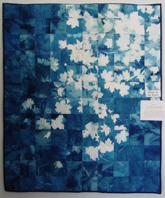 Blanket, Cyanotype  Make cyontype quilt for bed or fabric wall hanging to go with denim theme.
