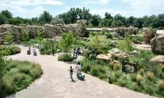 Landscape design makes visitors to the Denver Zoo's Predator Ridge exhibit feel like they're really in Africa.