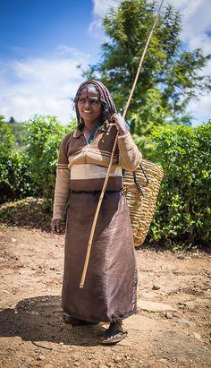 #Tea plantation on Sri Lanka. #VisitSriLanka