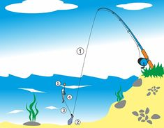 Zajímavé! Fishing Tips, Lov, Outdoor Decor, Bass, Fishing, Lining Up, Sign, Lowes, Double Bass