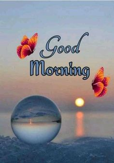 Good Morning Beautiful Pictures, Good Morning Beautiful Flowers, Good Morning Nature, Good Morning Roses, Good Morning Images Flowers, Good Morning Cards, Good Morning Beautiful Quotes, Good Morning Photos, Good Morning Gif