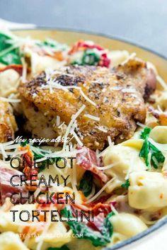 #chickenrecipes #bakedchicken #chickenthighs #butterchicken #crockpotchicken #chickenhealthy #chickenenchiladas #chickenparmesan #chickencasserole #chickenandrice #chickenpasta #chickeneasy #chickendinner #orangechicken #chickenpiccata #chickenmarsala #chickenmarinade #chickenspaghetti #lemonchicken #teriyakichicken #chickenpotpie #chickenfajitas #ranchchicken #chickenalfredo #friedchicken #chickentenders #chickensalad #chickentacos #shreddedchicken #slowcookerchicken #bbqchicken #grilledchicken Chicken Fajitas, Bbq Chicken, Slow Cooker Chicken, How To Cook Chicken, Baked Chicken, Chicken Recipes, Sausage Tortellini, Chicken Tortellini, Chicken Spaghetti