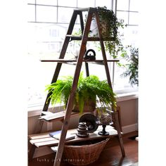 Repurposed Ladder DIY's and Inspirations - The Cottage Market...kinda cool