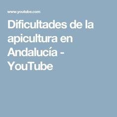 Dificultades de la apicultura en Andalucía - YouTube