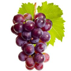How to Pick & Store - Look for: Yellow hue for green grapes. Avoid withered-looking stems.Storage: Up to 5 days in refri Homemade Skin Care, Diy Skin Care, Fruit And Veg, Fruits And Vegetables, Food Art For Kids, Garden Labels, Fruits Photos, Fruit Photography, Green Grapes