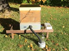 """The """"BeeSauna"""", a German invention to control Varroa mites through precision heat control. While bees can tolerate temperatures up to 64°C, bee nymphs can only handle temperatures up to 42°C.  Fortunately, the varroa's proteins are clotting at over 37°C. This device heats the hive to a constant temperature between 40°C and 42°C. Is this the perfect chemical-free solution?"""