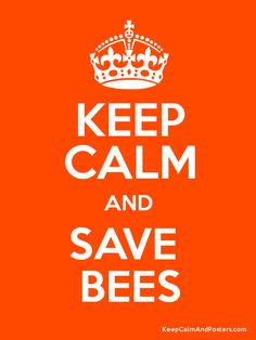 Keep Calm and SAVE  BEES Poster/
