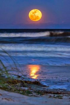 A full moon, Hilton mother nature moments | beautymothernature | tumbler