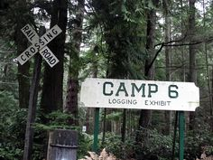 Camping In Washington State, Tacoma Washington, Northwest Usa, My Childhood Memories, North West, The Dreamers, Scenery, Places, Destiny