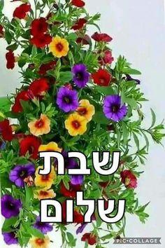 ×¤×¨×—×™× Shabbat Shalom In Hebrew, Shabbat Shalom Images, Good Shabbos, Happy Sabbath, Happy Anniversary Cards, Future Husband, Floral Arrangements, Portraits, Pictures