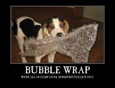 Bubble Wrap > Maturity