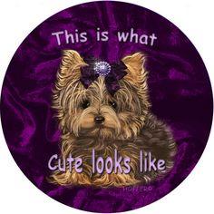 Yorkie Yorkshire Terrier Personalized by ladyjanesposinparlor, $3.99