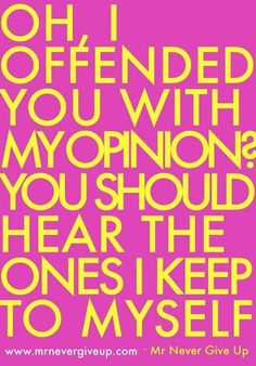 OH, I OFFENDED YOU WITH MY OPINION?