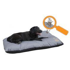 doggy dry hundebademantel alles f r den hund pinterest anziehen ohne und leben. Black Bedroom Furniture Sets. Home Design Ideas