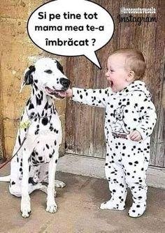 Adorable Photos of Babies and their Pets Animals For Kids, Animals And Pets, Cute Animals, Nursery Accessories, Pets 3, Pet News, Baby Gift Sets, Little Critter, Sarcastic Humor