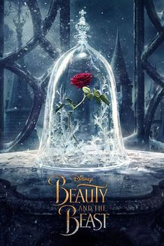 Beauty and the Beast - A live-action adaptation of Disney's version of the classic 'Beauty and the Beast' tale of a cursed prince and a beautiful young woman who helps him break the spell.
