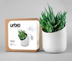 I nearly invested in this #kickstarter project but it wouldn't work in my studio. #plant #gardening