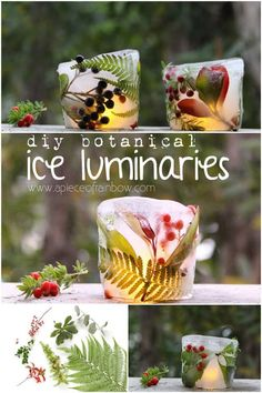DIY Christmas Luminaries and Home Decor for The Holidays - DIY Botanical Ice Luminaries - Cool Candle Holders, Tea Lights, Holiday Gift Ideas, Christmas Crafts for Kids Christmas Lights, Christmas Time, Christmas Crafts, Christmas Decorations, Luminaria Diy, Crafts For Kids, Diy And Crafts, Kids Diy, Party Decoration