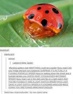 Dear @Emily Van I caught you a ladybug