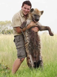 "Wonder who will be laughing when the hyena says ""screw this!"" and chomps on the guy's face?"