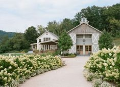 The rolling Virginia mountains and North Garden's picturesque Pippin Hill Farm & Vineyards were the backdrop for Chris and Rachel's relaxed autumn wedding. As University of Virginia… Barn Wedding Venue, Farm Wedding, Autumn Wedding, Wedding Blog, Wedding Reception, Wedding Ideas, Wedding Ceremonies, Diy Wedding, Wedding Favors