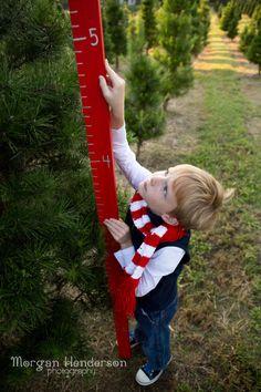 Jordan Lake Christmas Tree Farm Family Photography | Family ...