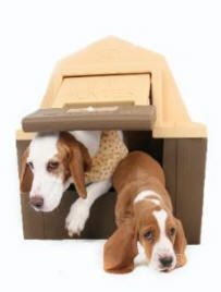 Insulated DP Hunter Dog House With Floor Heater and Solar Powered Fan Self for sale online Large Dogs, Small Dogs, Dog House Heater, Plastic Dog House, Floor Heater, Small Dog House, Insulated Dog House, Solar Fan, Hunter Dog