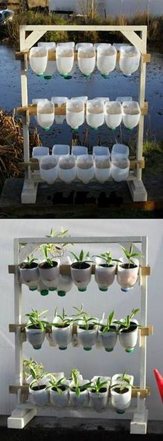 How about adopting this creative solution if you want to have a mini garden / backyard garden but lack? Reuse plastic bags and let's keep suspended vertically, as on cue. Simple and very practical!