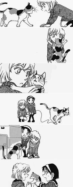 ♥@CharmingMystery♥: Ai, Ayumi & cats!