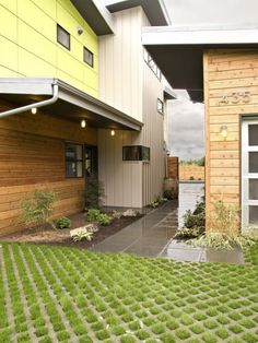 I like the idea of green driveways. They allow rain absorption, reduce heat from the sun (increased by solid surface driveways), and provide an area that can be both lawn and patio.