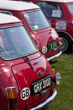 Works Cooper   GRX 310 D  .. The most used works car , used 11 times on different events , engine ran on split Webbers ,