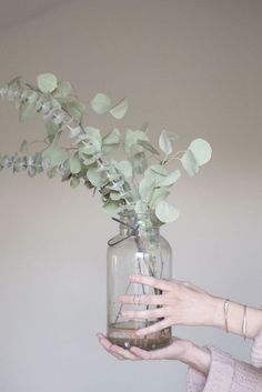 Design Therapy | EUCALYPTUS CHRISTMAS | http://www.designtherapy.it