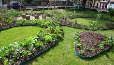 What+Are+Edible+Vegetable+Leaves | Front Yard Gardens and Vegetables Patches Replacing Lawns in New Yard ...