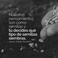 ... Jesús Adrián Romero. Nuestros pensamientos son como semillas y tú decides que tipo de semillas siembras.